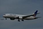 よしポンさんが、成田国際空港で撮影したユナイテッド航空 787-822の航空フォト(写真)