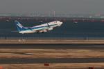 Gpapaさんが、羽田空港で撮影した全日空 737-881の航空フォト(写真)