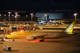 A350XWB-HNDさんが、関西国際空港で撮影したスクート 787-8 Dreamlinerの航空フォト(写真)