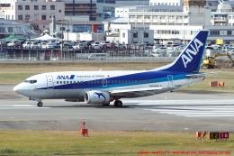tabi0329さんが、福岡空港で撮影したANAウイングス 737-5L9の航空フォト(写真)