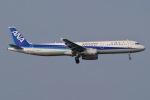 JRF spotterさんが、羽田空港で撮影した全日空 A321-131の航空フォト(写真)