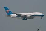 JRF spotterさんが、香港国際空港で撮影した中国南方航空 A380-841の航空フォト(写真)