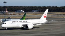 誘喜さんが、成田国際空港で撮影した日本航空 787-846の航空フォト(写真)