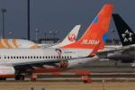 多楽さんが、成田国際空港で撮影したチェジュ航空 737-8ASの航空フォト(写真)