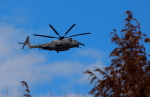 自由猫さんが、岐阜基地で撮影した海上自衛隊 MH-53Eの航空フォト(写真)