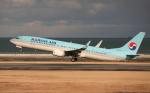asuto_fさんが、大分空港で撮影した大韓航空 737-9B5/ER の航空フォト(写真)