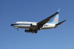 utarou on NRTさんが、成田国際空港で撮影した中国南方航空 737-71Bの航空フォト(写真)