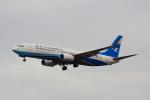 こだしさんが、成田国際空港で撮影した厦門航空 737-85Cの航空フォト(写真)