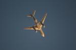 Koenig117さんが、関西国際空港で撮影した全日空 777-281の航空フォト(写真)