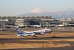 cherrywing787さんが、羽田空港で撮影した全日空 787-881の航空フォト(写真)