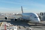 krozさんが、ジョン・F・ケネディ国際空港で撮影したアシアナ航空 A380-841の航空フォト(写真)