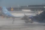 krozさんが、ジョン・F・ケネディ国際空港で撮影したインテルジェット A320-214の航空フォト(写真)