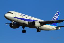 武彩エアさんが、成田国際空港で撮影した全日空 A320-211の航空フォト(写真)