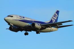 武彩エアさんが、成田国際空港で撮影したANAウイングス 737-54Kの航空フォト(写真)