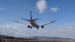こーへーさんが、伊丹空港で撮影した全日空 787-881の航空フォト(写真)
