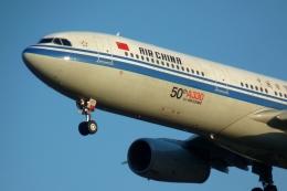Bluewingさんが、成田国際空港で撮影した中国国際航空 A330-343Eの航空フォト(写真)