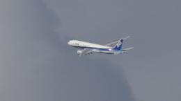 こーへーさんが、伊丹空港で撮影した全日空 777-281の航空フォト(写真)