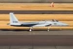reonさんが、名古屋飛行場で撮影した航空自衛隊 F-15J Eagleの航空フォト(写真)