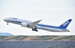 sky77さんが、長崎空港で撮影した全日空 787-9の航空フォト(写真)