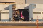 mild lifeさんが、伊丹空港で撮影したピーチ A320-214の航空フォト(写真)