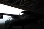 kanadeさんが、木更津飛行場で撮影した陸上自衛隊 LR-1の航空フォト(写真)