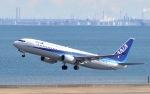 Hiroaviationさんが、羽田空港で撮影した全日空 737-881の航空フォト(写真)