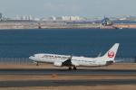 Gpapaさんが、羽田空港で撮影した日本航空 737-846の航空フォト(写真)