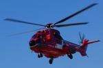 kaeru6006さんが、東京ヘリポートで撮影した東京消防庁航空隊 AS332L1の航空フォト(写真)