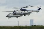 kanadeさんが、木更津飛行場で撮影した陸上自衛隊 EC225LP Super Puma Mk2+の航空フォト(写真)