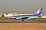 md11jbirdさんが、伊丹空港で撮影したANAウイングス 737-54Kの航空フォト(写真)