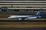 よしポンさんが、羽田空港で撮影した全日空 A320-211の航空フォト(写真)