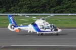 korosukeさんが、南紀白浜空港で撮影したオールニッポンヘリコプター AS365N2 Dauphin 2の航空フォト(写真)