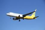 utarou on NRTさんが、成田国際空港で撮影したバニラエア A320-214の航空フォト(写真)