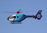 SHIKIさんが、名古屋飛行場で撮影した中日新聞社 EC135P2の航空フォト(写真)