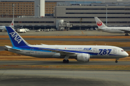 LTD.EXP.DreamLinerさんが、羽田空港で撮影した全日空 787-881の航空フォト(写真)