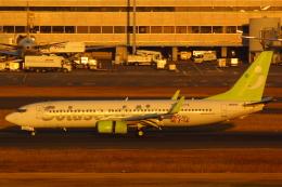 LTD.EXP.DreamLinerさんが、羽田空港で撮影したソラシド エア 737-86Nの航空フォト(写真)