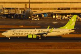 LTD.EXP.DreamLinerさんが、羽田空港で撮影したソラシド エア 737-81Dの航空フォト(写真)