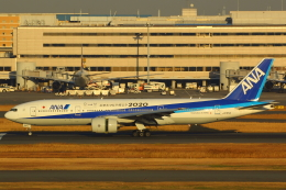 LTD.EXP.DreamLinerさんが、羽田空港で撮影した全日空 777-281/ERの航空フォト(写真)