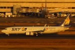 LTD.EXP.DreamLinerさんが、羽田空港で撮影したスカイマーク 737-8FHの航空フォト(写真)