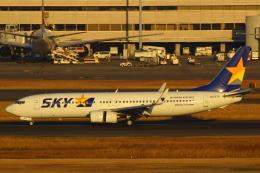 LTD.EXP.DreamLinerさんが、羽田空港で撮影したスカイマーク 737-8ALの航空フォト(写真)
