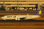 ハンバーグ師匠さんが、羽田空港で撮影したスカイマーク 737-82Yの航空フォト(写真)