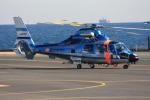 VICTER8929さんが、横浜ヘリポートで撮影した神奈川県警察 AS365N3 Dauphin 2の航空フォト(写真)