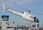 Soraya_Projectさんが、東京ヘリポートで撮影した法人所有 AS350B Ecureuilの航空フォト(写真)