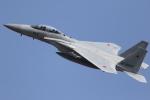 サンサンサンヨンさんが、新田原基地で撮影した航空自衛隊 F-15DJ Eagleの航空フォト(写真)