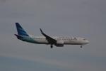 しかばねさんが、スワンナプーム国際空港で撮影したガルーダ・インドネシア航空 737-8U3の航空フォト(写真)