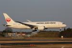 MA~RUさんが、成田国際空港で撮影した日本航空 787-846の航空フォト(写真)