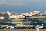 yuu-kiさんが、羽田空港で撮影した日本航空 737-846の航空フォト(写真)