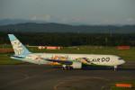 ぼういんぐべえすさんが、新千歳空港で撮影したAIR DO 767-381の航空フォト(写真)