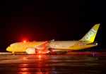 Cygnus00さんが、新千歳空港で撮影したスクート 787-8 Dreamlinerの航空フォト(写真)