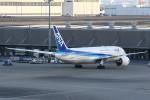 masa707さんが、羽田空港で撮影した全日空 787-881の航空フォト(写真)